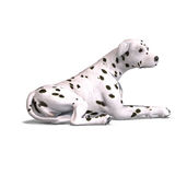 Dalmation Dog. 3D rendering with clipping path and shadow over white Stock Images