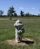 Dalmation fire hydrant. Fire hydrant in a pet area of a rest stop painted to look like a dalmation dog stock photos