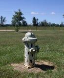 Dalmatyńczyka pożarniczy hydrant Zdjęcia Stock
