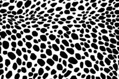Dalmatyński psi bezszwowy wzór Lub krowy skóry tekstura Obrazy Stock
