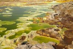 Dalol, Dankakil消沉 埃塞俄比亚的火山的温泉城 Earth's最低的土地火山 库存照片