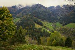 Dalsikt i den svarta skogen, Tyskland Royaltyfri Fotografi