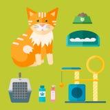 Daltar djura symboler för färgrik vektor för katt åtföljande gullig utrustning stock illustrationer