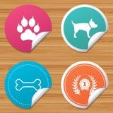 Daltar symboler Katten tafsar med kopplingtecknet royaltyfri illustrationer