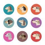 Daltar vektorsymboler - hundkapplöpningbeståndsdelar Royaltyfri Fotografi