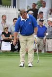 daly-golfarejohn professionell Arkivfoto