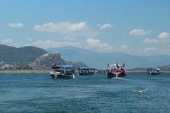 dalyan flod Seagullen fångade fisken Fotografering för Bildbyråer