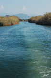 Dalyan river in Turkey Royalty Free Stock Photography