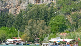 DALYAN, TURKEY - MAY 2015: boat tour river reeds, historical stock video