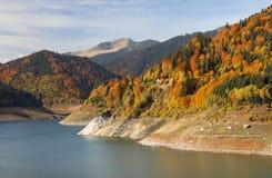 Dam湖在喀尔巴阡山脉 免版税库存照片