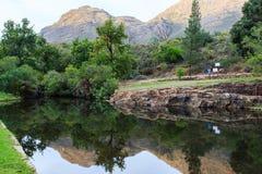 Dam - Algerije, Cedarberg royalty-vrije stock foto