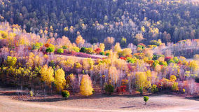 Dam Autumn in Inner Mongolia Stock Photos