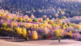 Dam Autumn in Inner Mongolia Stock Photos