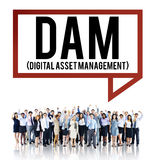 DAM Digital Asset Management Organization Concept Royalty Free Stock Photos