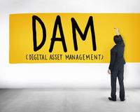DAM Digital Asset Management Organization Concept Stock Photo