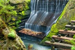 Dam in een Aard Stock Foto's