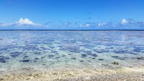 Dam Elliot Island royaltyfria foton