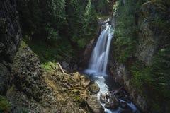 Dam Falls Royaltyfri Fotografi