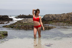 Dam i rött: Bikiniversion Arkivfoton