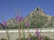 Dam of the Lago di Morasco Royalty Free Stock Photos
