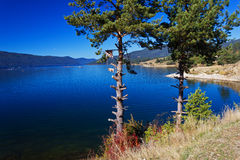 A dam lake. Mountain lake Royalty Free Stock Images