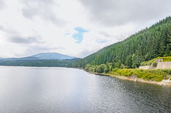 The dam and lake Oasa, river Sebes, pine forests Royalty Free Stock Image
