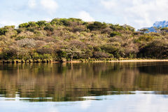Dam Lake Vegetation Waters Colors Royalty Free Stock Images