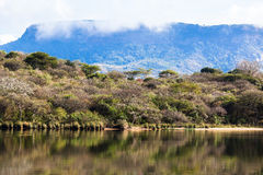 Dam Lake Vegetation Waters Colors Royalty Free Stock Photography