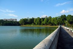 Dam in MacRitchie Royalty-vrije Stock Foto