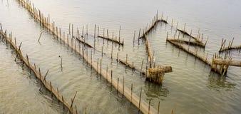 Dam Nai lagoon. In hue , Viet Nam Stock Images