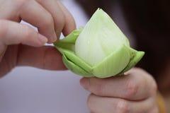 Dam` s räcker det hopfällbara härliga gröna organiska bladet för Lotus ` s, anvisning för blommavikning, meditation royaltyfri bild