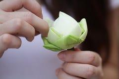 Dam` s räcker det hopfällbara härliga gröna organiska bladet för Lotus ` s, anvisning för blommavikning, meditation arkivfoton