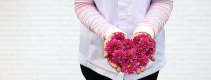 Dam som rymmer blomman för hjärtaformrosa färger på hennes hand på vit tegelstenbakgrund för förälskelse- och omsorgdesignbegrepp royaltyfria foton