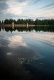 Dam in spring stock photos