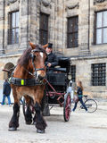 Dam Square- Amsterdam Royalty Free Stock Photography