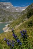 Dam in the Swiss Alps in Valais. Dam of emosson in valais,swiss stock images