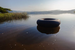 Dam Waters Tire Tube Play Royalty Free Stock Image