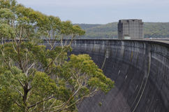 Dam Wall and Tree Royalty Free Stock Images