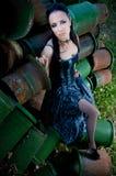 dama Zdjęcie Stock