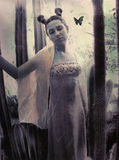 Dama de honor de la mariposa Fotos de archivo