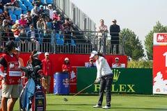 Dama Fachowego golfa skojarzenie Fotografia Stock