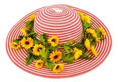 Dama kapelusz Fotografia Royalty Free