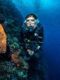 Dama nurek i spektakularny ściana koral zdjęcie royalty free