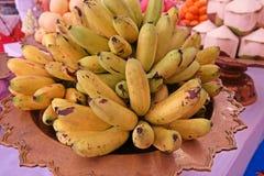 Dama Palcowy banan lub cukieru banan Zdjęcie Royalty Free