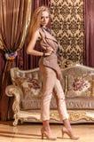 Dama w barok projektującym pokoju Zdjęcie Stock