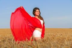 Dama w czerwieni w polu Obrazy Stock