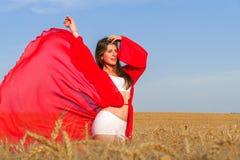 Dama w czerwieni w polu Obrazy Royalty Free