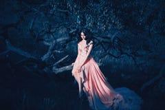 Dama w luksusowej bujny menchii pastelu sukni zdjęcia stock
