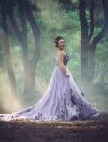 Dama w luksusowej luksusowej purpury sukni obrazy stock