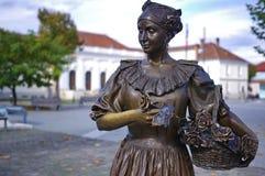 Dama z różami zdjęcia royalty free